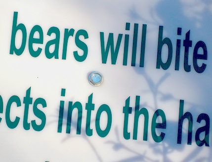 Bears_will_bite
